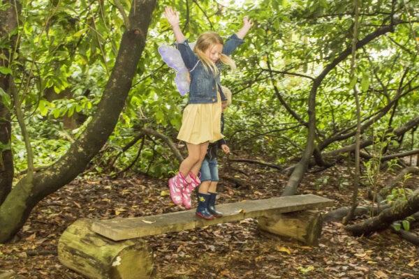 Galgorm Fairy Trail
