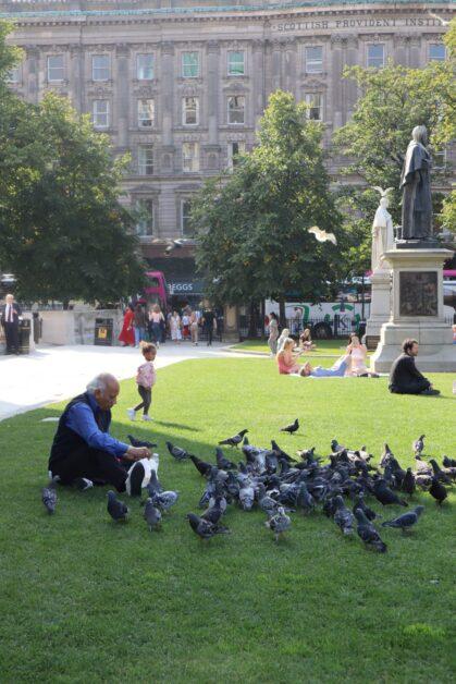 Birds Belfast